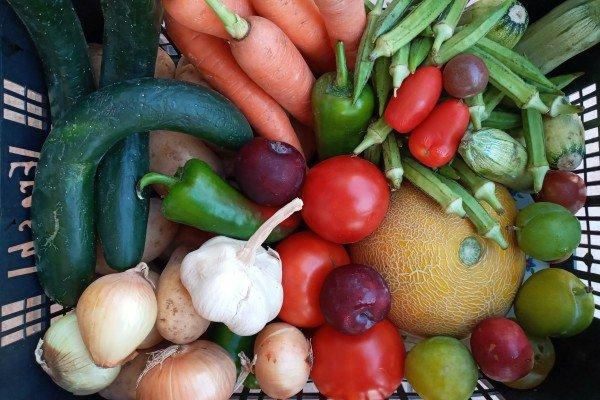 Καλάθι εβδομάδας με φρούτα & λαχανικά για ένα έως δυο άτομα