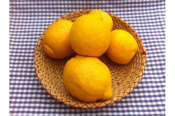 Λεμόνια Μεγάρων