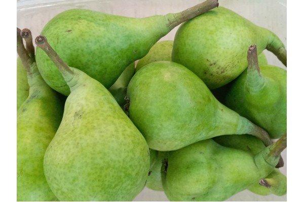 Αχλάδια κοντούλες Εύβοιας (μισό κιλό)