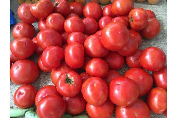 Ντομάτες Αργολίδας