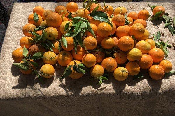 Πορτοκάλια Άργους